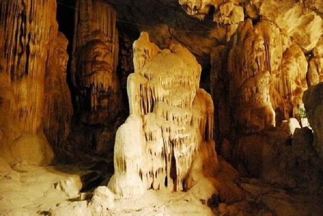 Toàn cảnh bên trong hang dơi